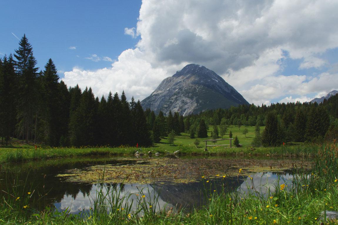 Golf Seefeld-Wildmoss